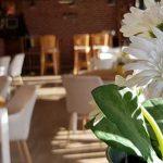 Уютно заведение с отлична кухня в кв. Надежда, София | TiCo Bar&Dinner